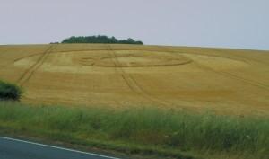 Cheeseford Head crop circle