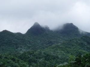 El Yunque Peak, Puerto Rico