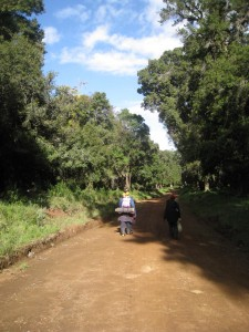The road to Chogoria, kenya