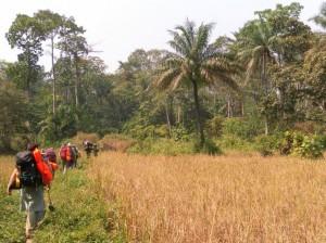 Trekking in Sierra Leone