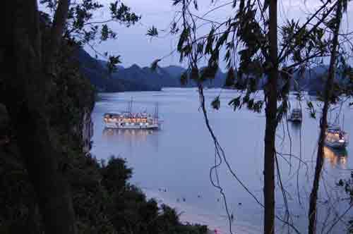 Boat s in Halong Bay, Vietnam