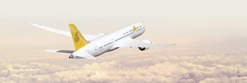 Royal Air Brunei Boeing 787 Dreamliner