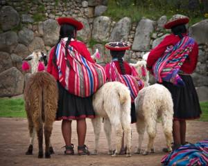 Llamas and trad dress at Machu Picchu