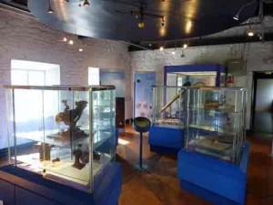 Science centre, Birr Castle