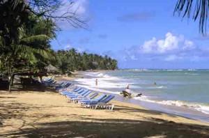 Beach, Dominican Republic