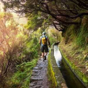 Walking the Levadas in Madeira