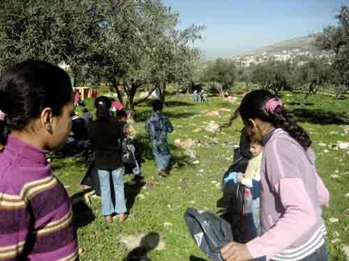 West Bank, Palestine, garden