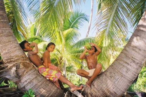 Children on tree, Kiribati