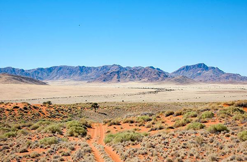 Namibian Lanscape