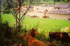 Nui Zhai village