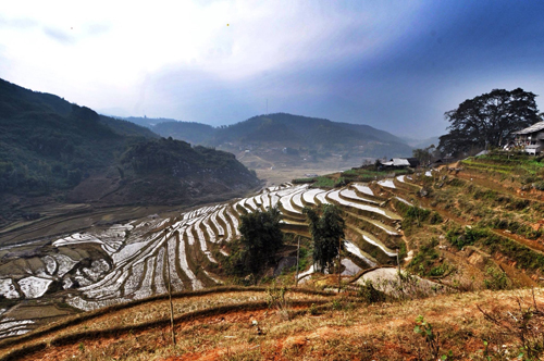 Terraced rice paddies, Vietnam