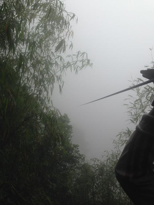 Zipwire to oblivion, Laos