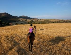 Italian horse tour
