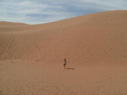 Inner Mongolia desert dune