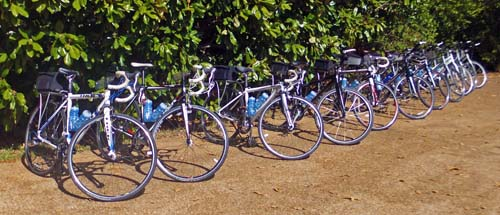 Bikes for the Natchez Trace