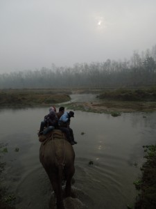 Elephant back safari, Chitwan, Nepal