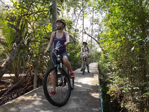 Bicycling Bangkok