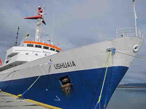 The Ushuaia Moroni