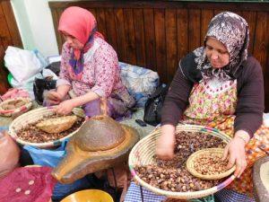Extracting argan oil
