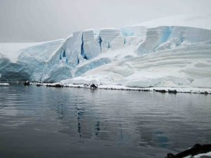 3009164-foyn-harbour-ice-cliffs