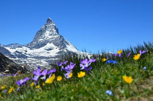 Mont Blanc, Zermatt